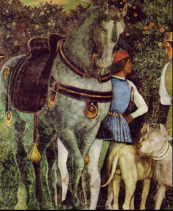 blog horse